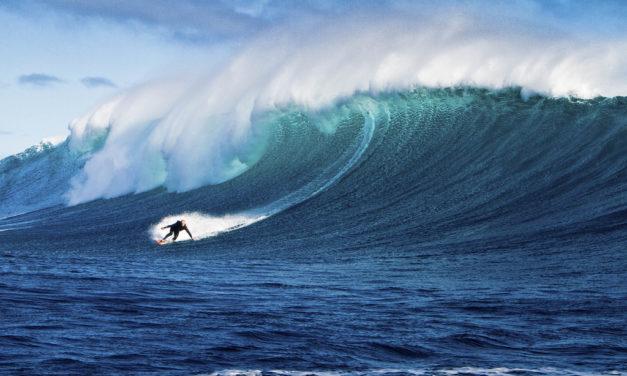 Surfeando el contenido