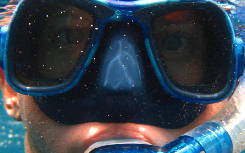 ¿Eres de Scuba o de Snorkeling?