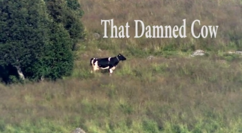 """That Damned Cow"" by Tim Prevett"